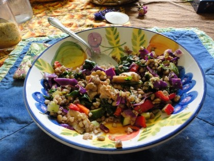 sautred mushrooms, broccoli, chard, buckwheat groats, red cabbage and lentil salad