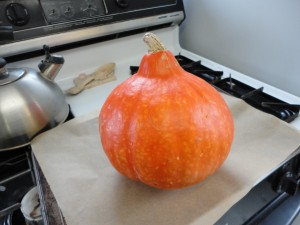 This is the red kuris squash I happened to use this time.