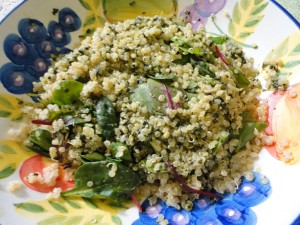 Lemony Kale Pesto and Quinoa