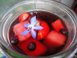 Frozen Fruity Tea with Borage and Strawberry