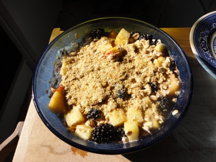 breakfast bowl with blackberries