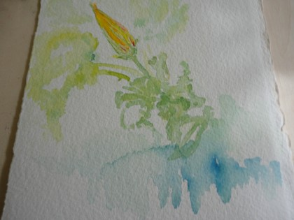 Plein Air Zucchini Blossom