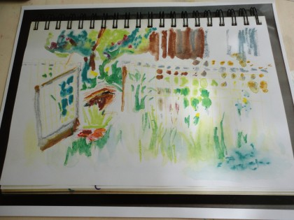 watercolor sketch of star garden