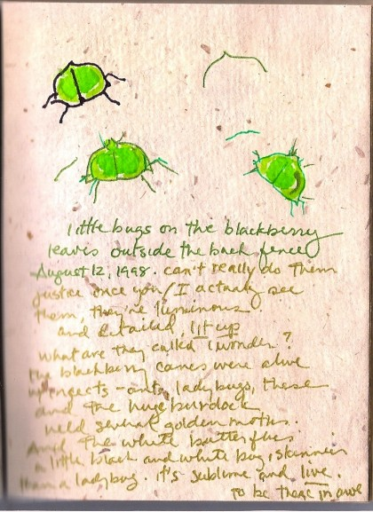 little green bugs