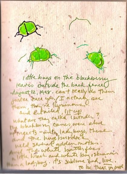little green bugs