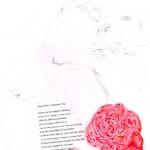 Romeo Valentine 1