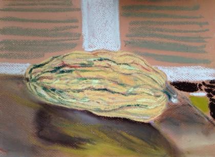 delicata squash chalk pastel by Maria Theresa Maggi