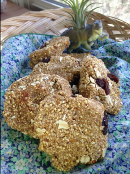 Happy Accident Crunchy Oatmeal Millet Cookies