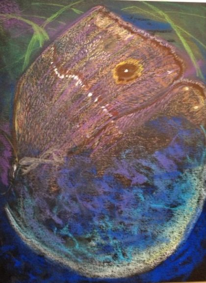 """Butterfly Eclipse,"" chalk pastel by Maria Theresa Maggi"