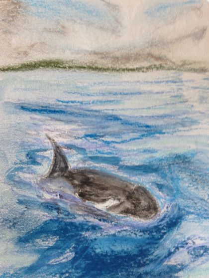 """Orca,"" multimedia Sketch by Maria Theresa Maggi"