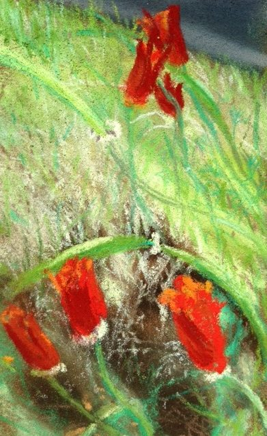 """""""Poppies,"""" chalk pastel by"""